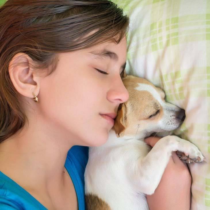 dog and girl sleeping